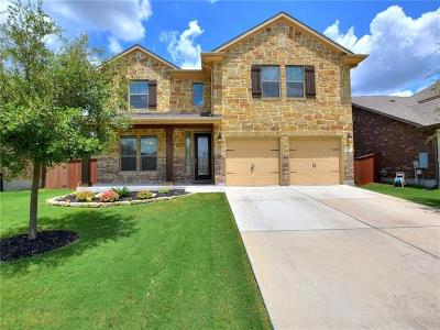 Liberty Hill Single Family Home For Sale: 252 Norcia Loop