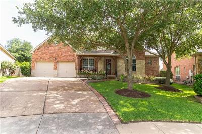 Round Rock Single Family Home For Sale: 2814 Cool River Loop