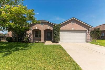 Round Rock Single Family Home For Sale: 19721 San Chisolm Dr