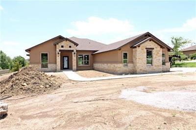 Salado Single Family Home For Sale: 1004 Park View Dr