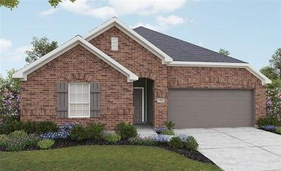 Pflugerville Single Family Home For Sale: 17024 Borromeo Ave