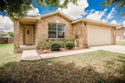 Kyle Single Family Home For Sale: 103 San Gabriel Dr