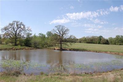 Lexington TX Farm For Sale: $600,000