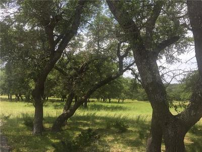 Dripping Springs Farm For Sale: TBD Mystic Overlook