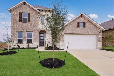 Round Rock Single Family Home For Sale: 3204 Hidalgo Loop