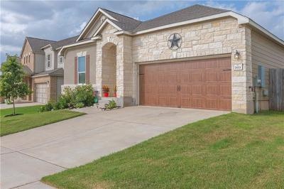 Austin Single Family Home For Sale: 7433 Janes Ranch Rd