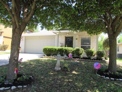 Round Rock Single Family Home For Sale: 2729 Breezy Point Cv