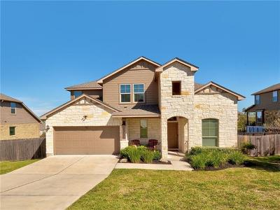 Dripping Springs Single Family Home For Sale: 17908 Linkview Dr