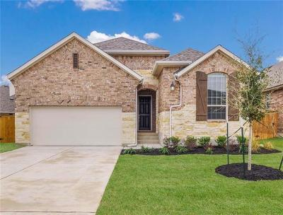 Round Rock Single Family Home For Sale: 2958 Diego Dr