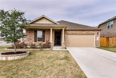 Pflugerville Single Family Home For Sale: 19800 Druid Path