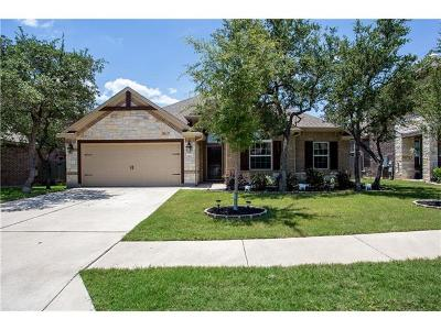 Cedar Park Single Family Home For Sale: 1503 Terrace View Dr