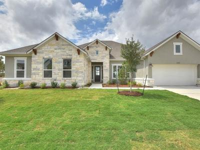 Dripping Springs Single Family Home For Sale: 135 Dayridge Dr