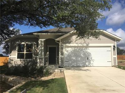 Leander Single Family Home For Sale: 101 Syrah Ct