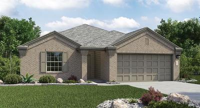 Williamson County Single Family Home For Sale: 235 Xanadu Dr