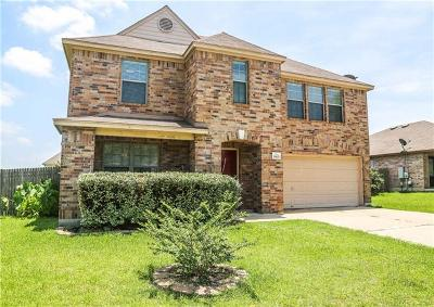 Round Rock Single Family Home For Sale: 19621 San Chisolm Dr
