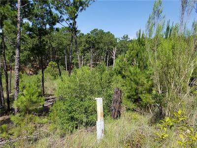Bastrop Residential Lots & Land For Sale: Lots 73,74 S Hill Ridge Dr