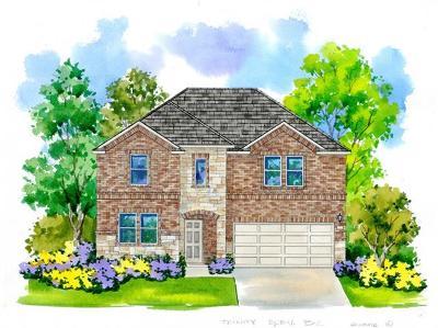 Pflugerville Single Family Home For Sale: 17017 Borromeo Avenue