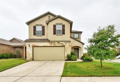 Travis County Single Family Home For Sale: 1417 Cedar Stand Pass