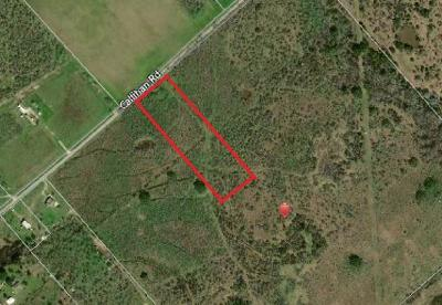 Luling Farm Pending - Taking Backups: 10 Acres-Tract 8 Callihan Rd