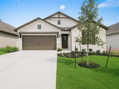 Leander Single Family Home For Sale: 4209 Turin Dr
