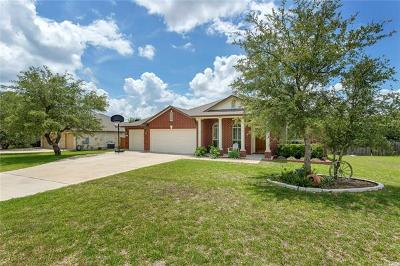 Dripping Springs Single Family Home Pending - Taking Backups: 17709 Linkhill Dr