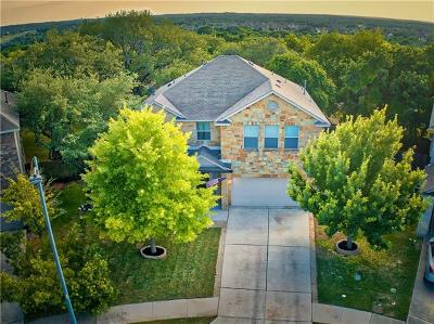 Hays County, Travis County, Williamson County Single Family Home Coming Soon: 12028 Herb Brooks Dr