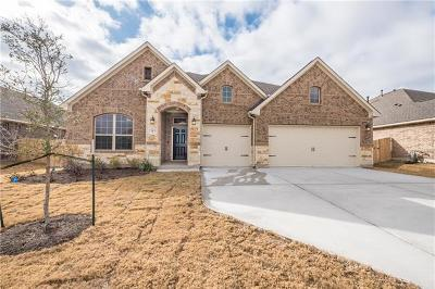 Pflugerville Single Family Home For Sale: 3313 Nighthawk Dive Ln Ln