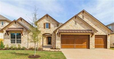 Cedar Park Single Family Home For Sale: 602 Raging River Rd