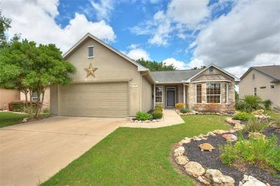 Georgetown Single Family Home For Sale: 143 Blazing Star Dr