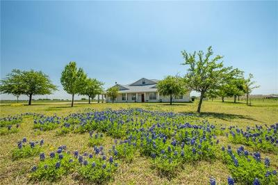 Pflugerville Single Family Home Active Contingent: 5109 Gate Dancer Ln