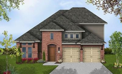 Pflugerville Single Family Home Active Contingent: 20716 Gray Heron Ln