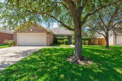 Cedar Park Single Family Home For Sale: 1807 Woodland Dr