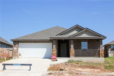 San Marcos Single Family Home For Sale: 3513 Cinkapin Dr