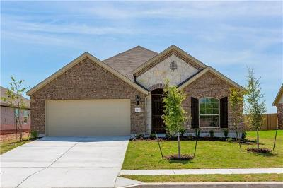 Pflugerville Single Family Home For Sale: 5105 Anaheim Ave