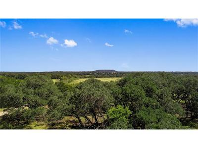 Liberty Hill Farm For Sale: Lot 10 County Road 200