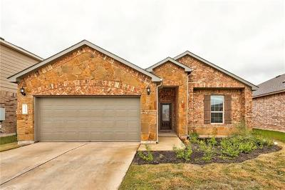 Pflugerville Single Family Home For Sale: 20029 Ploughshores Ln