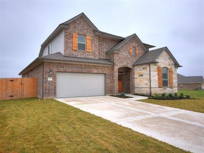 Pflugerville Single Family Home For Sale: 20313 Martin Ln