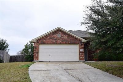 Austin Single Family Home For Sale: 11104 Barn Owl Dr