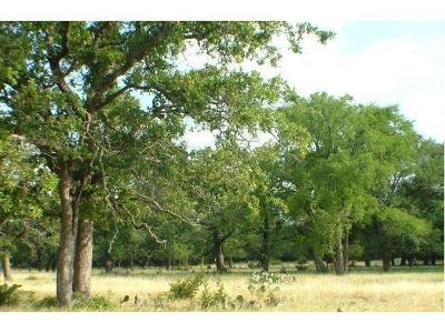 Burnet  Farm For Sale: 109 County Road 116