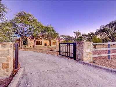 Austin Single Family Home For Sale: 326 Whirlaway Dr