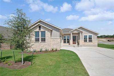 Leander Single Family Home For Sale: 828 Mediterranean Drive Dr