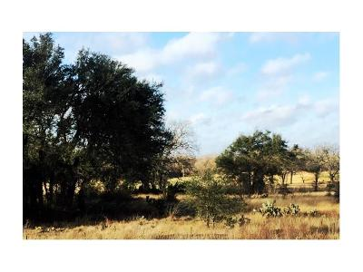 Georgetown Residential Lots & Land For Sale: 1008 Prairie Lily Pl