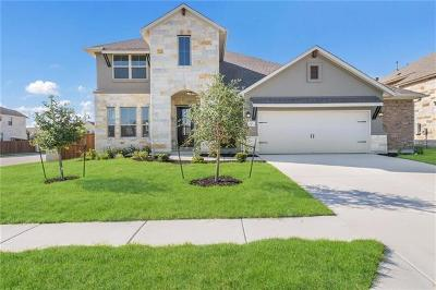 Liberty Hill Single Family Home For Sale: 301 Daniel Xing