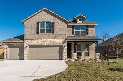 Pflugerville Single Family Home For Sale: 20033 Navarre Ter