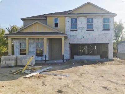 Single Family Home For Sale: 3209 Windy Vane Dr