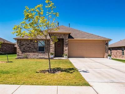 Kyle Single Family Home For Sale: 279 Dusky Thrush Dr
