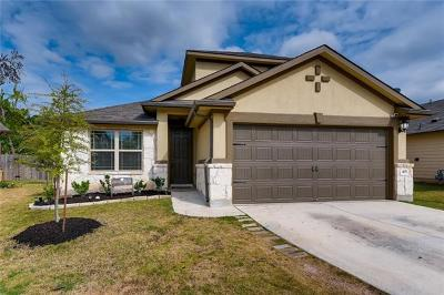 Manchaca Single Family Home For Sale: 401 Anacua Loop