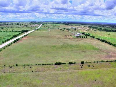 Bell County, Burnet County, Comal County, Fayette County, Hays County, Lampasas County, Lee County, Llano County, San Saba County, Travis County, Williamson County Farm For Sale: 700 Highway 183