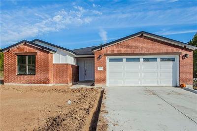 Lago Vista Single Family Home For Sale: 20100 Buchanan Cv