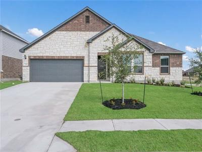 Round Rock Single Family Home For Sale: 7319 Leonardo Drive